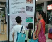 An Oasis of Survival and Hope - exhibition in Central Hong Kong